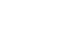 BR_logo_alpha